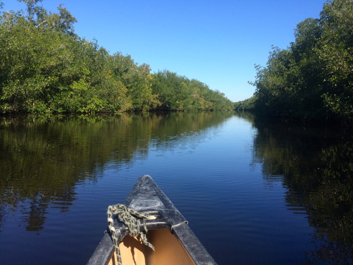 Canoeing the Everglades