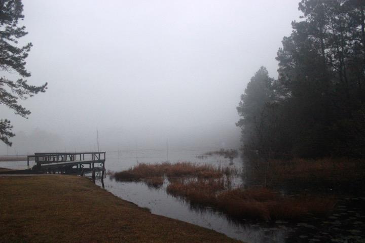 Lake Juniper Fog